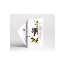 【Zishi 羅賓漢】萬用空白童畫書