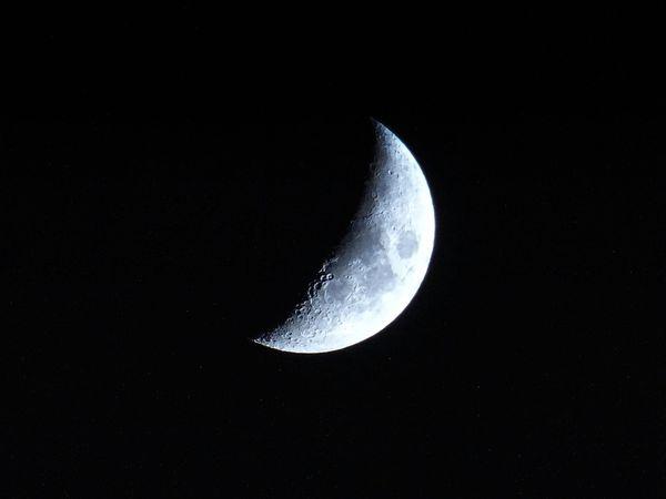 新月許願:當月亮落入十二星座的運勢指南【上】